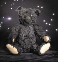 Rare Black Steiff Bear